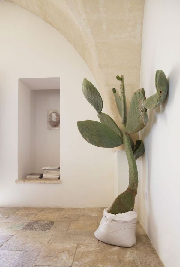An Escape-Worthy Home in Puglia on apartment 34